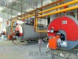 菏泽锅炉厂WNS2-1.25-Q系列2吨13公斤压力燃气蒸汽锅炉