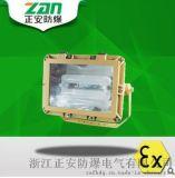 SBD1109免維護節能防爆泛光燈120/150/200(W)