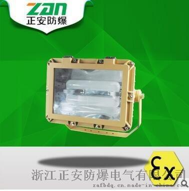 SBD1109免维护节能防爆泛光灯120/150/200(W)