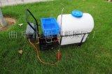 旭阳手推式茶树打药机电动打药喷雾机