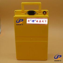 48V20AH电动摩托车 电池组广州1组起私人定制批发