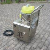 闖王小型家政保潔清洗機 多功能蒸汽清洗機