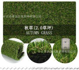 遵义草坪厂,专业生产仿真草皮,运动休闲草坪