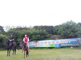 深圳騎馬的地方你知道嗎