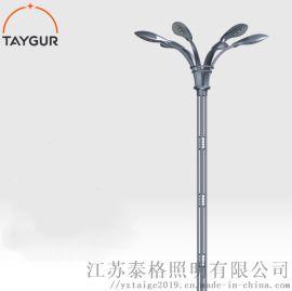泰LED照明灯、异形路灯杆,户外路灯、太阳能路灯