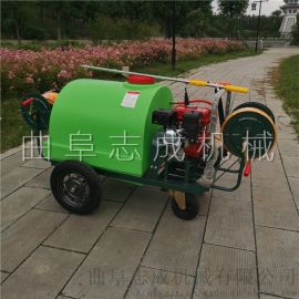 专业生产汽油高压打药机动力喷雾机水稻喷雾器