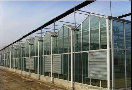 泉瑞智能玻璃温室纹络温室及温室骨架