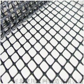 塑料网A六安塑料网A塑料网厂家