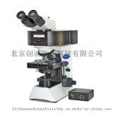 奥林巴斯CX31荧光生物显微镜