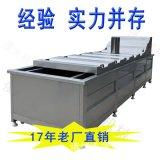 刀豆彩椒漂烫机 大型蒸汽加热漂烫流水线