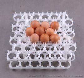 厂家直销塑料蛋托盘 新型塑料蛋托 天仕利塑料蛋托