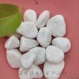 北京密云天然白色鹅卵石   白色雨花石永顺直销厂家