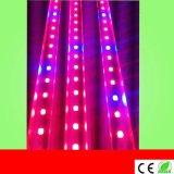 深圳厂家供应LED T8植物生长灯,T5一体化植物补光灯