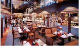 酒店餐桌餐椅,快餐桌椅,沙发卡座,软包椅,香河欧班
