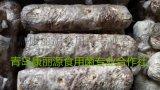 食用菌香菇菌棒香菇菌包出口经销商