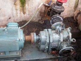 板框压滤机的污水动力-高浓度泥浆泵