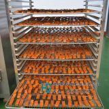 煙燻豆腐乾機器生產廠家,煙燻爐廠家直銷