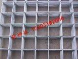 高質量網片 電焊網片 河北鍍鋅網片廠家