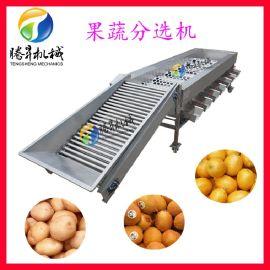 土豆分选机 核桃分级机 果蔬大少分机选