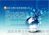 武汉博文佳智能玻璃膜生产项目可行性研究报告