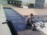楼顶防水堵漏