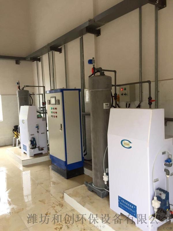 隔膜電解式二氧化氯發生器/農村飲水消毒設備