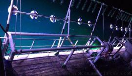 澳大利亚金枪鱼带鱼鱿鱼led集鱼灯光源cob