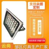 太陽能投光燈LED戶外防水泛光投射燈廣場戶外庭院壁燈照明