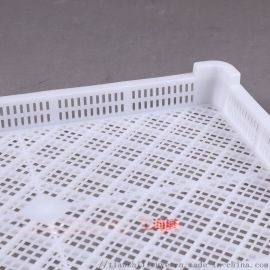 抗冻塑料单冻盘 塑料单冻盘报价 优质塑料单冻盘