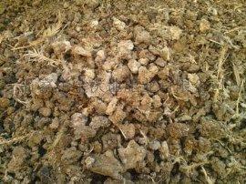 江苏台州干鸡粪厂|批发干鸡粪|鸡粪有机肥价格