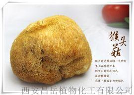 猴头菇提取物 猴头菇多糖