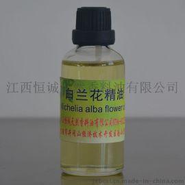 白兰花油专业厂家生产天然药用植物提取油