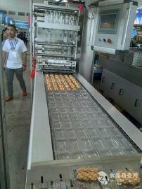 2017年海南海口多功能调味品包装机设备-真空包装机选型维护