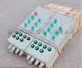 BXMD-10回路防爆照明动力配电箱