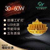 LED防爆灯 30-80W小功率LED防爆平台灯