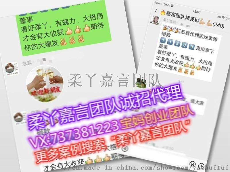 柔丫紙尿褲代理表圖 嘉言團隊怎麼代理雲倉系統賺錢