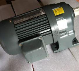WSS 750W连体式齿轮减速马达