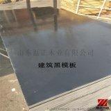 建筑模板建筑模板胶合板厂家直销建筑防水模板磊正木业