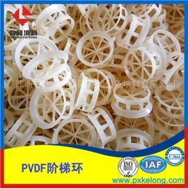 直销聚偏 乙烯DN76阶梯环优质PVDF阶梯环填料
