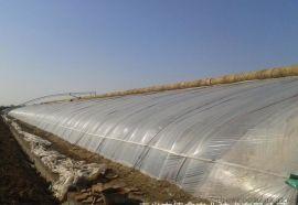 草莓火龙果采摘日光温室 青州泉瑞温室建造