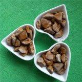 木魚石  生態路面用木紋石 地坪石子