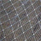 高强度格栅网-格栅护坡防护网-护坡格栅网厂家