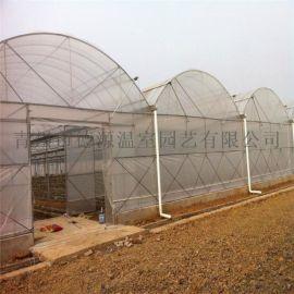 薄膜连栋温室 花卉蔬菜大棚 温室大棚造价