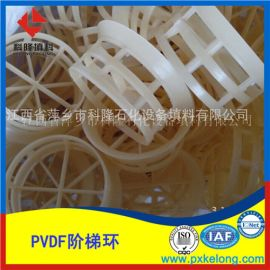 科隆填料PVDF双层阶梯环填料加强型塑料阶梯环