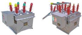皖开供应优质10KV柱上开关 高压真空断路器