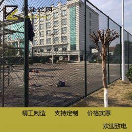 鵬隆 廠家 田徑場圍網 體育場籃球場圍欄 操場圍網