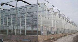 五合新型文洛玻璃温室