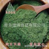 隆海食品厂家直销纯天然菠菜粉食品添加剂 质优价廉