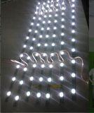 温州卷帘式拉布灯条S型蛇形灯条发光字迷你字树脂字软灯带LED灯条生产厂家供应商