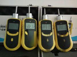 青岛路博LB-BX泵吸式单一臭氧检测仪